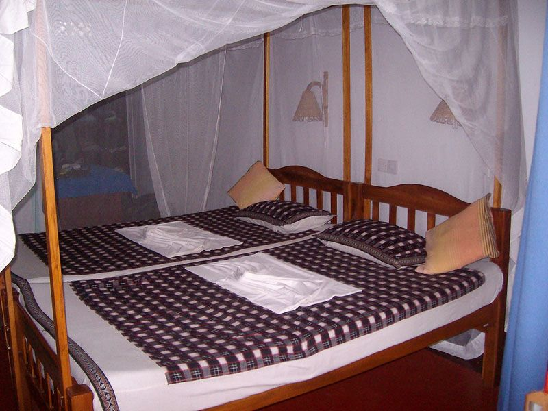 healthy abroad bed